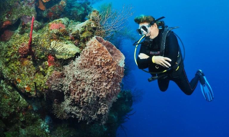 Belize: 8 van de…