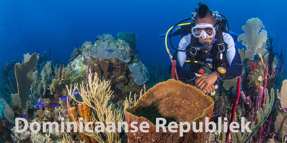 Dominicaanse Republiek-Bayahíbe